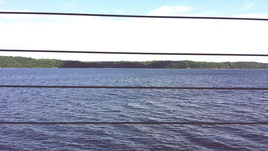 Lake View Trees