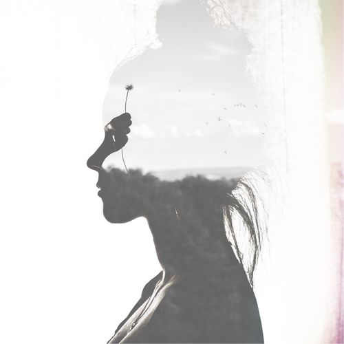flowers in her hand and on her mind Copy Space ArtWork Wallpaper Young Woman Contemporary Art Classic Elegant Woman Portrait Dandelion Seeds Dandelion Multiple Me Multiple Layers Multiexposure  Multiple Layers One Person Real People Day Nature Silhouette Men Window Holding Lifestyles Close-up Sky Side View Unrecognizable Person