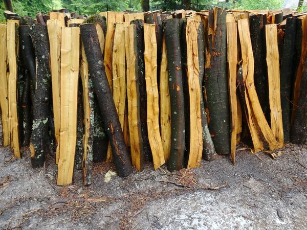 No People Day Outdoors Close-up Nature Holz Holzstamm Holzhaufen  Vertical Composition Vertical Wood Forestry Forstwirtschaft Wald Forest Wood - Material Colourful Nature Colour Contrast