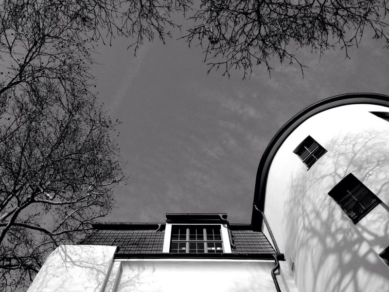 TreePorn Architecture_bw Black & White Blackandwhite Black And White Lookingup Architecture_collection Architecture IPhoneography Eye4photography  Mobilephotography Light And Shadow Trees The Architect - 2016 EyeEm Awards