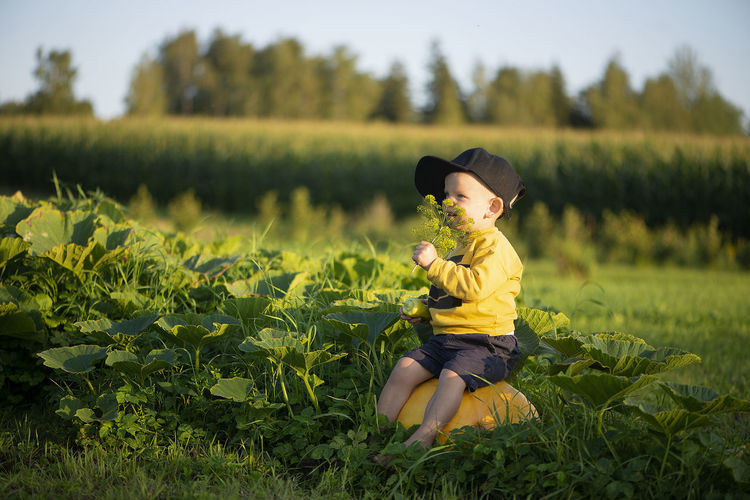 Little boy sitting on pumpkin outdoor
