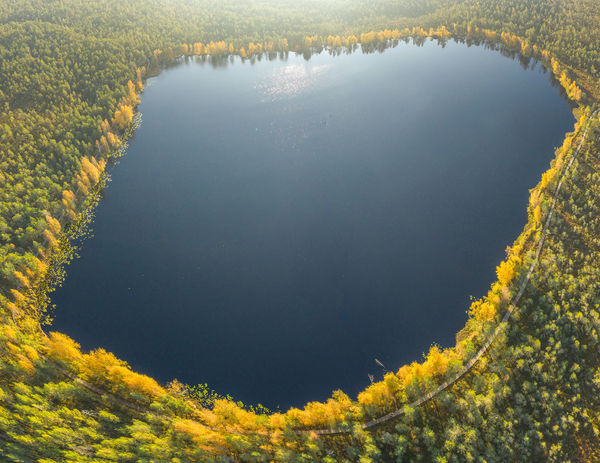 Lithuanian nature Lithuania Nature Lithuania Travel Lithuanian Nature Nature Park Drone  Aerial View Mavic 2 Mavic 2 Pro Europe Aerial DJI X Eyeem Lake Panoramic Drone Panorama Water Tranquility Beauty In Nature Tranquil Scene No People Scenics - Nature Day Plant Reflection High Angle View Outdoors Tree Idyllic Waterfront Non-urban Scene Standing Water Remote