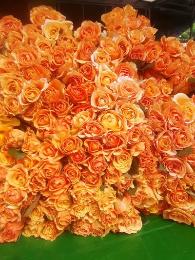 Bouquet Of Flowers Bouquet Boudoir Orange Flower Present Happy FlowersGartenglück Market Stall Marktstand Roses Enjoying Life Marktplatz Rosen Rose🌹 Roses🌹 Markt Rose - Flower Rose Garden Valentine's Day  My Funny Valentine Relaxing Fine Art Photography On Offer Orange Color Orange