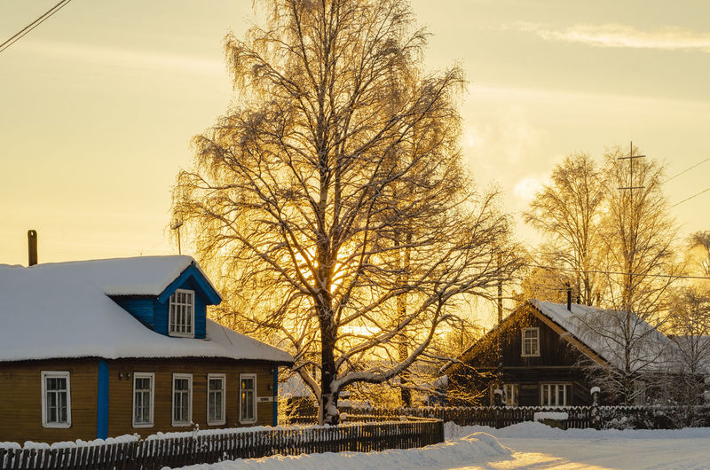 Built Structure Building Exterior Architecture Building Snow Tree Cold Temperature House Winter Nature Bare Tree Residential District Sky No People Plant Day Outdoors Covering City Cottage Snowcapped Mountain Row House Sunset Landscape