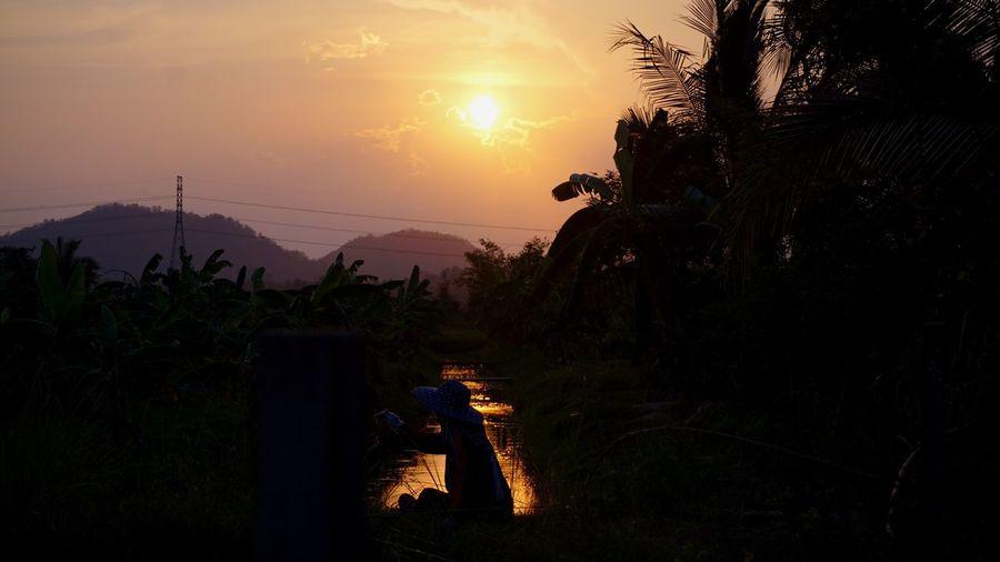 Nature Sunset Scenics Outdoors Water Mountain Tree Sky Nature Farmer Mood Sun Vanilla Sky