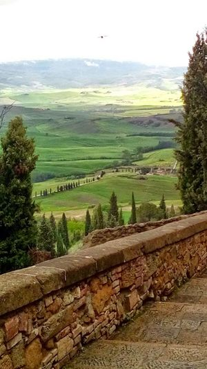 Walls Road Beauty In Nature Trees Hills And Valleys In Tuscany Italy🇮🇹 Toscana