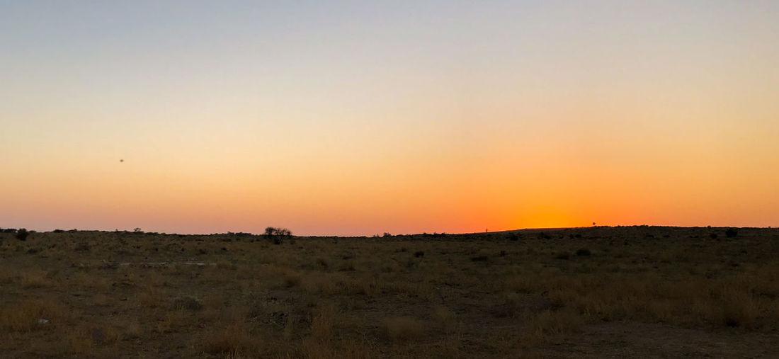 Desert India Sheepherd Travel Camel Jaisalmer Landscape Nature Obrigado Outdoors Rajasthan Sand Sand Dune Scenics Sheep Sunset Thar Desert