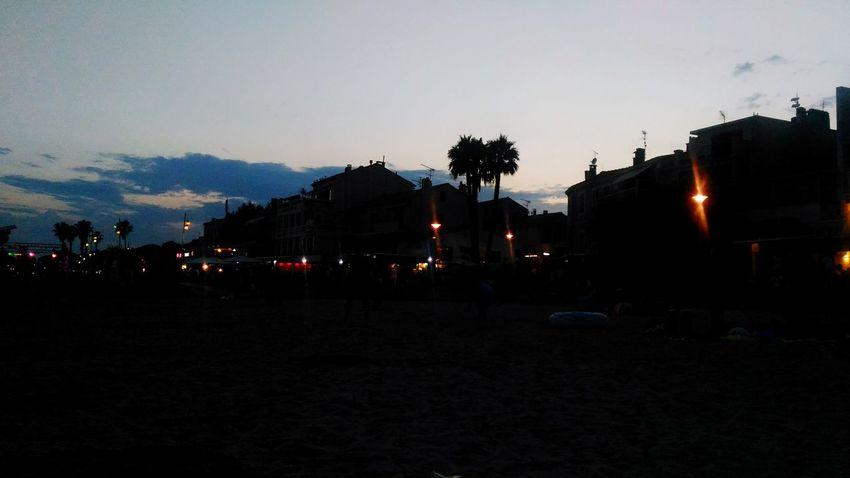 Sunset Beach palmtrees First Eyeem Photo