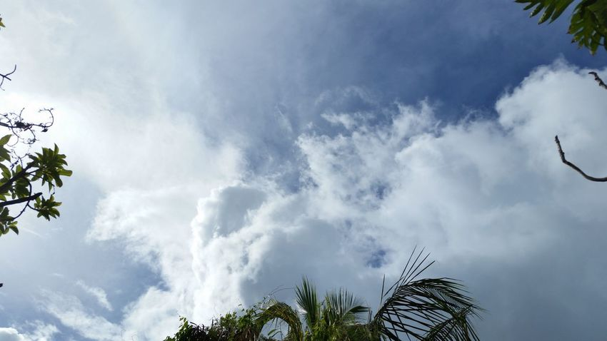 Cloud Formations Clouds And Sky No Edits No Filters Trees And Nature @ Constitution Hill