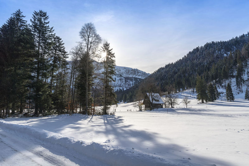 Winterlandscape in Eigenthal Beauty In Nature Cold Temperature Day Frozen Landscape Mountain Mountain Range Nature No People Outdoors Scenics Sky Snow Sunlight Tranquil Scene Tranquility Tree Weather White Color Winter