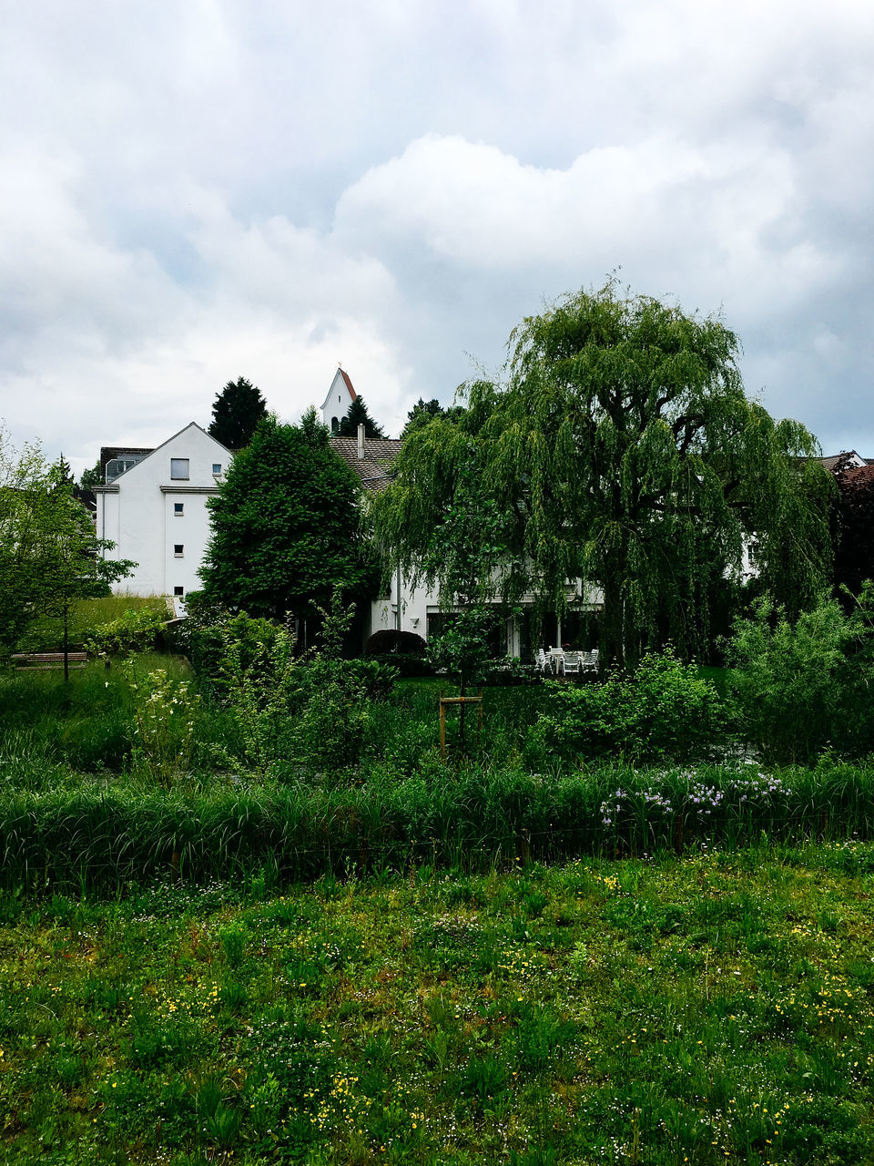 architecture, house, built structure, grass, tree, sky, building exterior, growth, no people, nature, outdoors, day