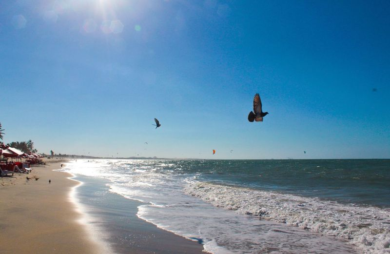 Voar Cumbuco Fortaleza Ceará Lifeisbeautiful Cumbuco Fortaleza Ceará Lifeisbeautiful Sea Water Sky Land Beach Horizon Over Water Horizon Sunlight Beauty In Nature Scenics - Nature Nature Blue Sunny Wave Motion Day Sand Aquatic Sport Sport Outdoors