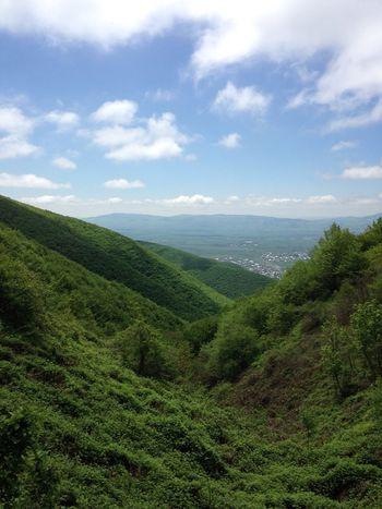 Azerbaijan Baku Nature Forest