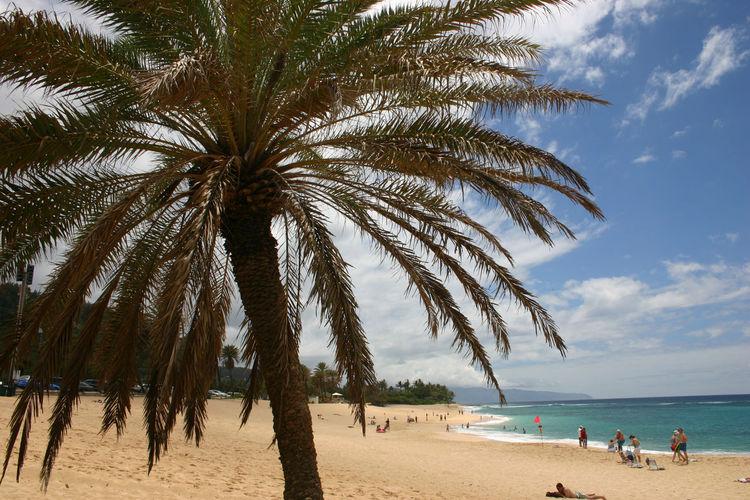 People On Idyllic Beach In Hawaii