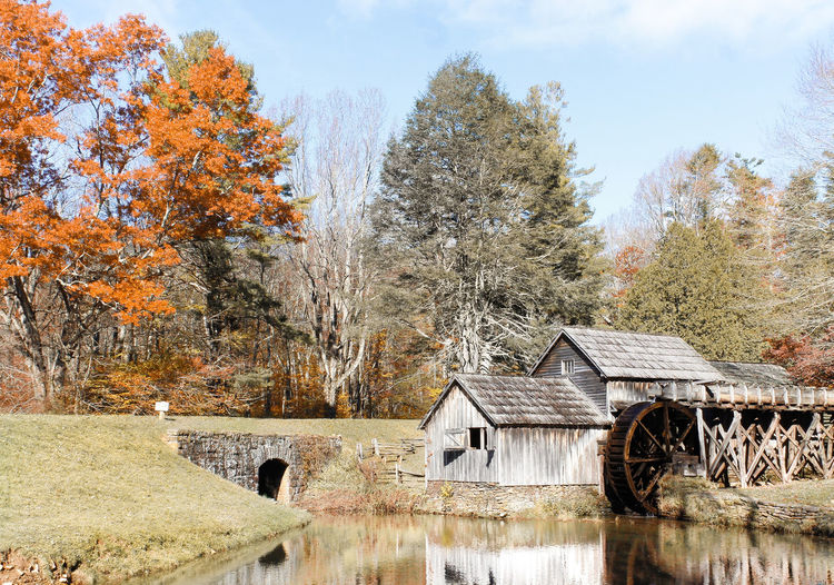 Autumn Mood Fall Mill Historic Mill Historic Mabry Mill Virginia Landscape Blue Ridge Mountains Blue Ridge Parkway Tree Autumn Nature Architecture Beauty In Nature Scenics - Nature Autumn Collection Outdoors Tranquility Built Structure