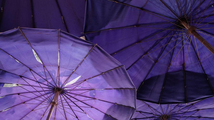 Low angle view of umbrella