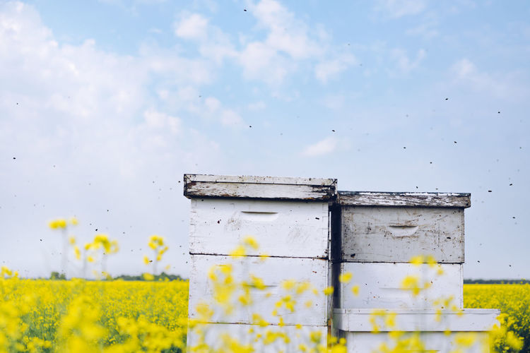 Close-Up Of Beehives On Field Against Sky