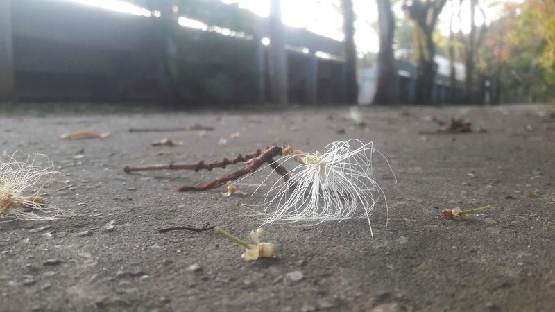La vida es más bella Sin Filtros