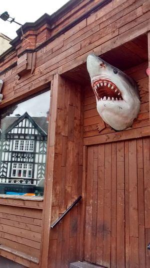 Door Decoration Entrance Full Frame No People Public Transportation Shark Sheffield Town Area