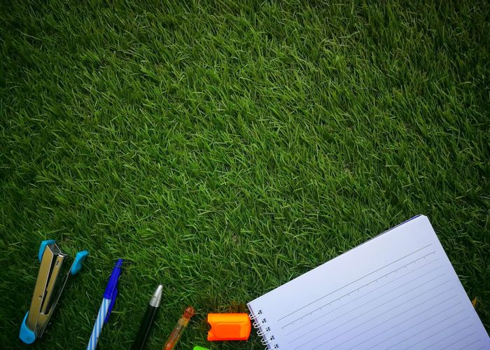 Directly above shot of office supplies on grassy field