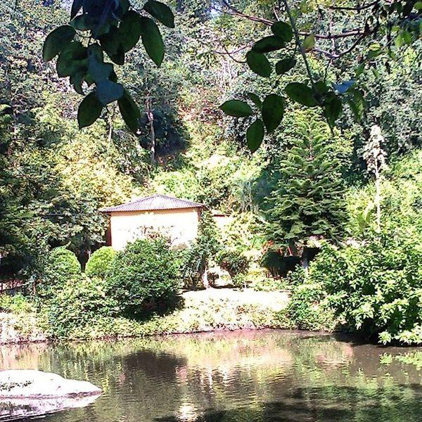 Jungle Resort in Assam! Schoolpicnic
