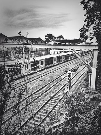 All aboard! Train Train Station Urban Urban Geometry Taking Photos Street Life Blackandwhite Australia Enjoying Life IPhoneography