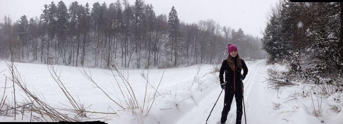 Winter Crosscountry Skiing Czech Republic