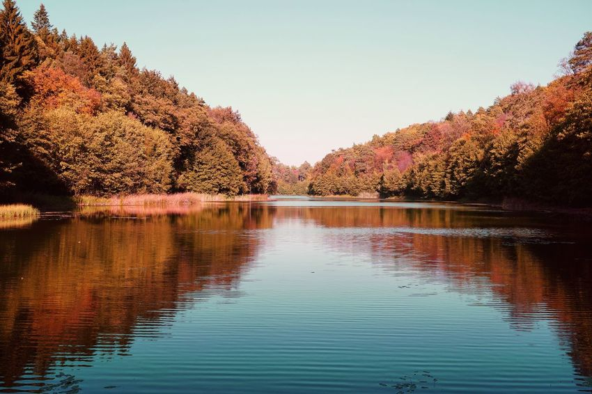 Brandenburg Swimming Holiday Travelphotography Autumn Collection Autumn colors Autumn Water Reflection Sky Tree Nature Beauty In Nature Plant Tranquility No People Lake Waterfront Clear Sky Scenics - Nature Day Tranquil Scene Outdoors Idyllic Growth
