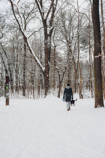 Rear view of man walking on snow covered trees