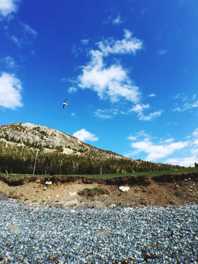 Take Flight Topsail Beach CBS NL ExploreNL Shot On IPhone 6s IPhoneography Sunshine
