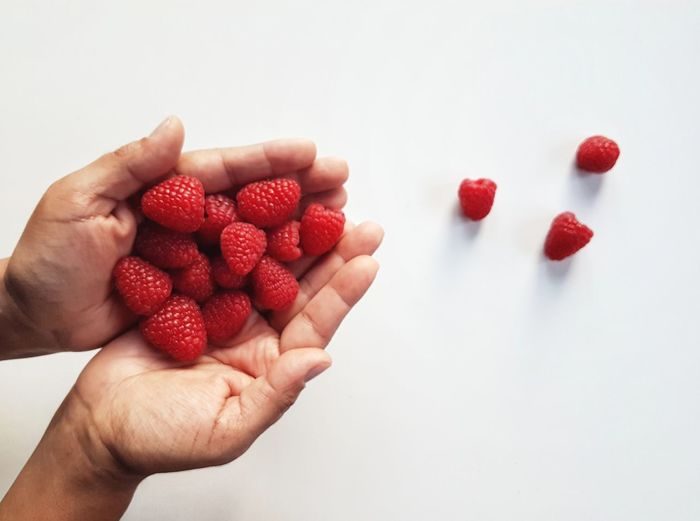 Raspberry Raspberries Holding Holding Hands Picoftheday Photooftheday Red White Background Human Hand Fruit Red White Background Raspberry Healthy Lifestyle Holding Strawberry Close-up Food And Drink Berry Fruit