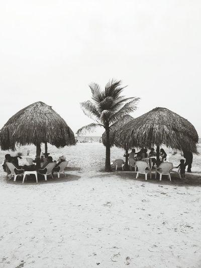Playa Boquilla Cartagena Colombia Swimming