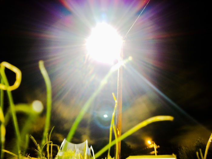 Lens Flare Sunbeam Sun Sunlight Nature No People Low Angle View Sky Illuminated Beauty In Nature Close-up EyeEmNewHere