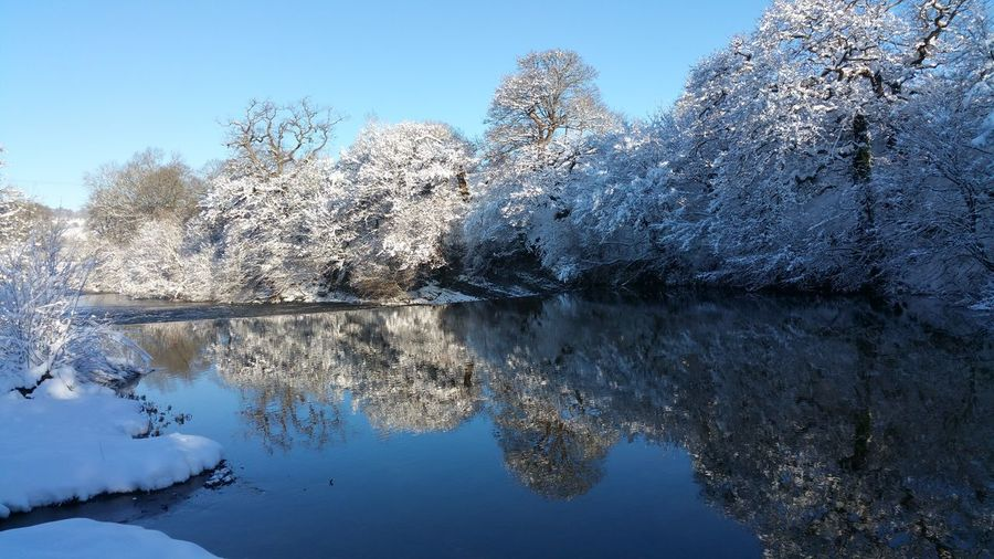river Severn in snow Snow River Reflection Wales Today Britain Temperate Nature Reserve River Severn Hafren Newtown Powys снег зима Природа река Weir Reflection Water Sky No People Day Nature Blue Outdoors Low Angle View Clear Sky Beauty In Nature Tree