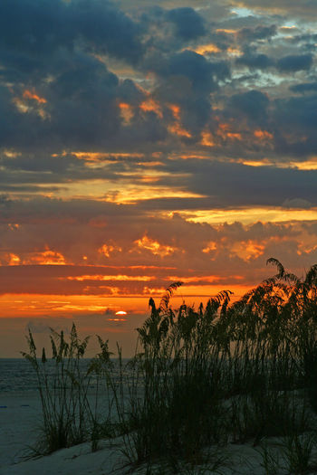 Beauty In Nature Cloud - Sky Dramatic Sky Gulf Of Mexico Landscape Moody Sky Nature No People Ocean Orange Color Saint Petersburg Florida Scenics Sky Sunset Tampa Bay Tranquil Scene Weather