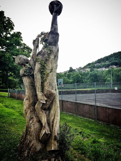 Trees Playing Basketball Tree Art IPhoneography Taking Photos