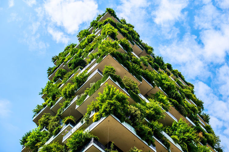 Bosco Verticale...Vertical Forest designed by Stefano Boeri Architects, Milan Italy Architecture Architecture_collection Milan Milan,Italy Milano Stefano Boeri Architectural Detail Architecture Architecturelovers Architecturephotography Architectureporn Bosco Verticale Building Exterior Built Structure Cloud - Sky Green Color Growth Low Angle View No People Outdoors Stefanoboeri Vertical Forest