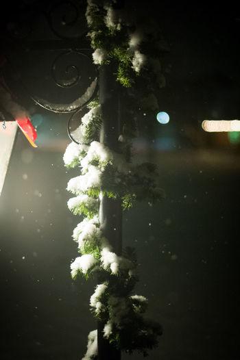 Christmas Christmas Around The World Christmas Garland Christmas Snow Light Snow Snow Dusting Snow ❄ Snowing