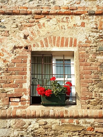 Old Window Details Textures And Shapes Architectural Detail Brick Wall Textures And Surfaces Old House Antique Window Flowers In A Pot Day Outside Red Flowers