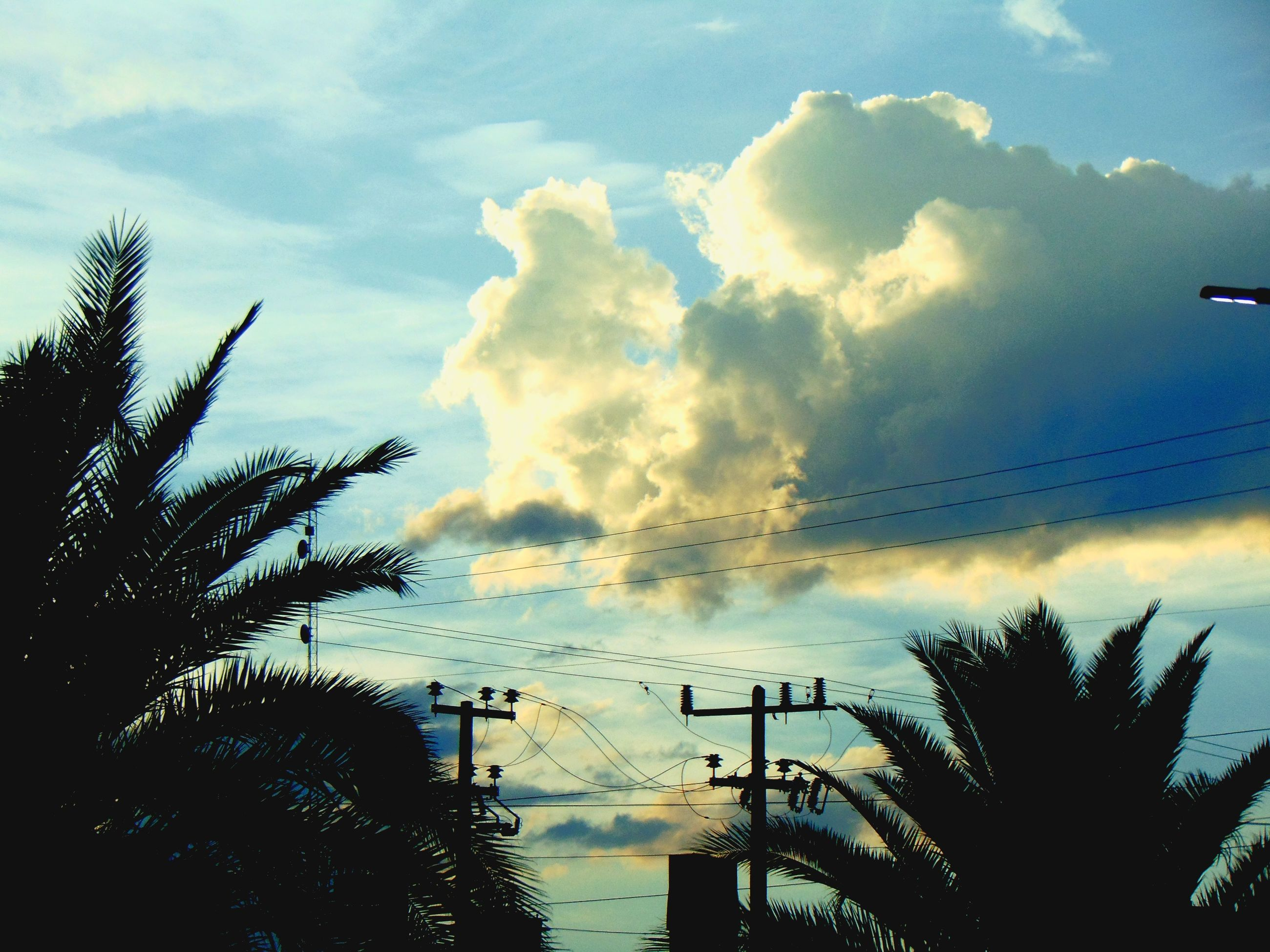 sky, cloud - sky, silhouette, cloudy, tree, sunset, cloud, tranquility, low angle view, scenics, beauty in nature, nature, power line, tranquil scene, weather, dusk, electricity pylon, overcast, dramatic sky, electricity