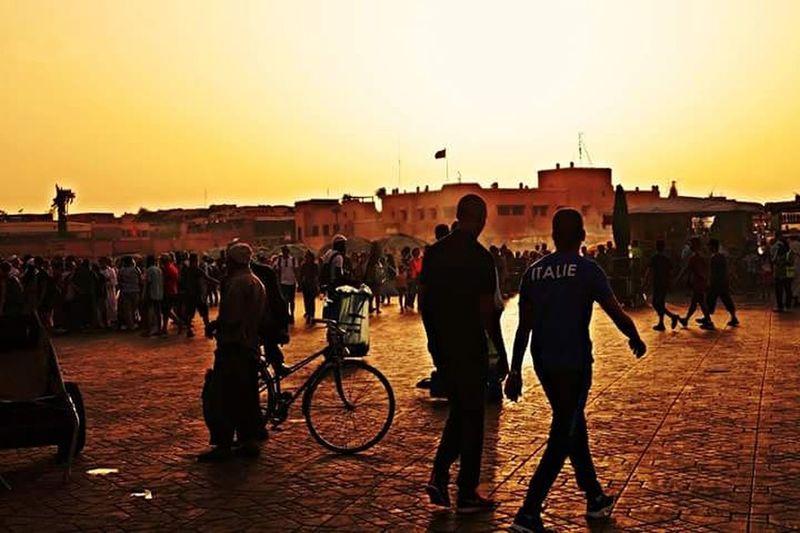 Bicycle Large Group Of People Men Sunset Orange Color Town Marrakech Djemaa El-Fna Market
