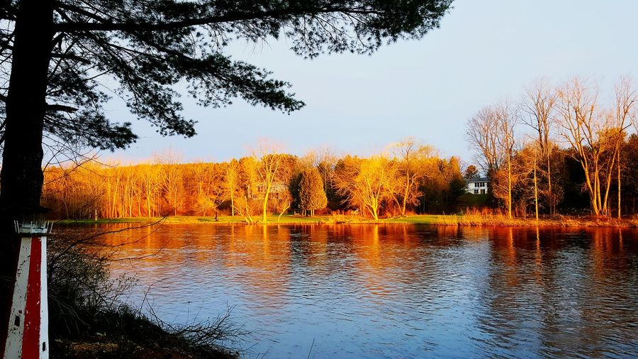 Tree Reflection Water Nature Sky No People Sunset Autumn Beauty In Nature Outdoors River Riverbank Scenics