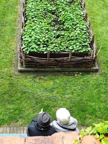 Reallove Bruges Older Couple High Angle View Garden Photography Belgium