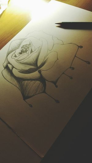 Creativity Indoors  Art Drawing Drawingoftheday Rose♥ Newtalent Nature Styles Popular Bestpic Pollen Blackandwhite Art Gallery Eyeemphoto Nice Flower Drawing Project My Drawing Bored Cute