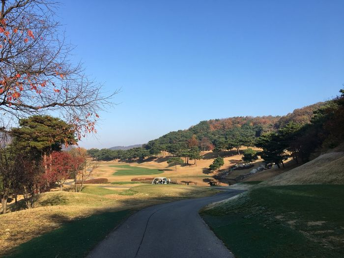 Golf Nature