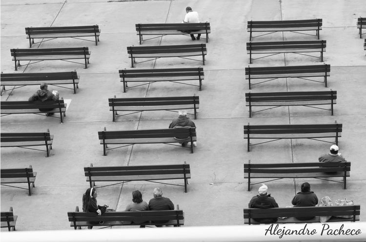 Esperando ganar Opening Day Race The Traveler - 2015 EyeEm Awards First Eyeem Photo Hello World Opening Day Black And White