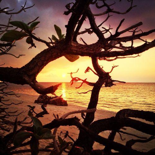 Great Sunset on