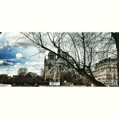 Notredame Paris Pariscartepostale Loves_paris retro