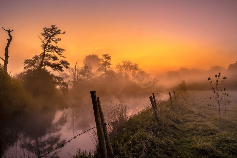 River Ouse Misty Sunrise Hosegood Andrew Colour Bedfordshire Harrold Ouse River Upper Tree Nature Water Outdoors Silhouette Beauty In Nature Sky