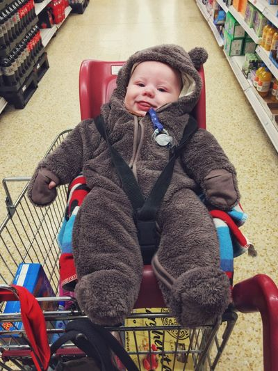 Three month old baby boy dressed in a bear suit sitting in a supermarket shopping trolley Childhood One Person Indoors  Full Length Warm Clothing Front View Leisure Activity Real People Scarf People Day Shopping ♡ Shopping Supermarket baby Baby Boy